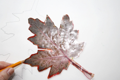 ALL THOSE CRAZY LEAVES – Composition, Shape, Colour - Step One