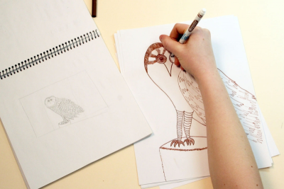 DRAWING CANADIAN CREATURES – Inspired by the Codex Canadensis - Step Three