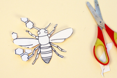ETCHED INSECTS – Colour, Line, Pattern - Step Two