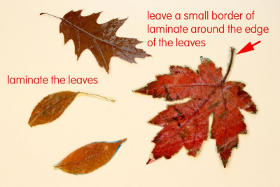MY LITTLE LEAF BOOK – Shape, Contrast, Pattern - Step Two