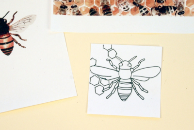 ETCHED INSECTS – Colour, Line, Pattern - Step One