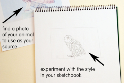 DRAWING CANADIAN CREATURES – Inspired by the Codex Canadensis - Step Two