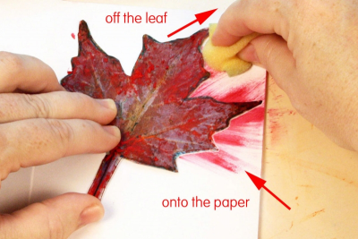 MY LITTLE LEAF BOOK – Shape, Contrast, Pattern - Step Five