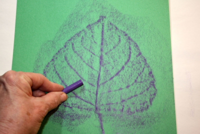 LEAFY SCULPTURE – Texture, Colour, Form - Step Two
