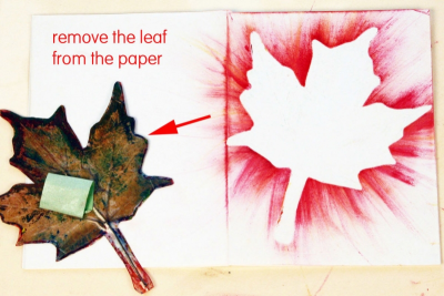 MY LITTLE LEAF BOOK – Shape, Contrast, Pattern - Step Six